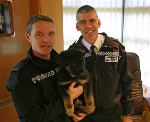 Dog handler Paul Hilder with new recruit Marshy and Chief Constable Andy Marsh
